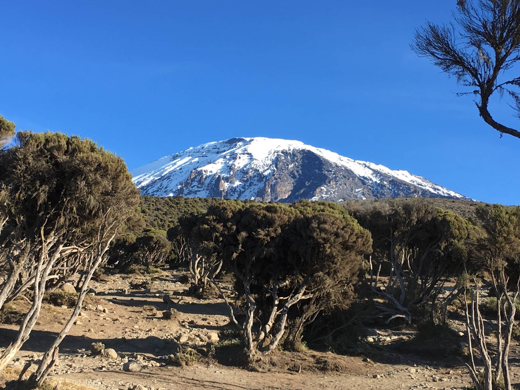 Kilimanjaro Northern Circuit Trail 2019